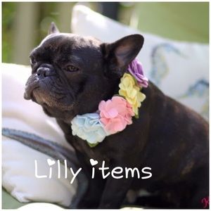 🌺🌸Lilly Pulitzer items!!!🌸🌺